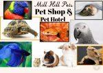 Mill Hill Pets